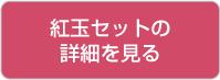 btn_kogyoku_detail